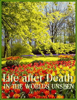 Life after Death in the Worlds Unseen